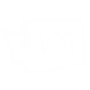 Washington State Symbol